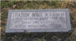 Shadow Wave's grave