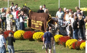 Mr Feelgood in the winners circle 2006