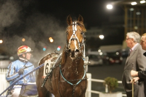 Destination Moon's first win - with owner Kerry Hoggard and driver Josh Dickie at Alexander park. Photo courtesy Trish Dunell
