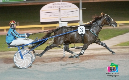 Destination Moon, winner at Cambridge 17 April 2014. Photo: Fokus Harness Photography