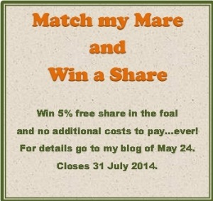 Match My Mare