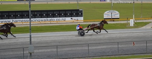 Driving The Dragon wins by 3 lengths at the Cambridge workouts today.