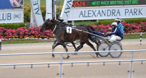 Holmes Hanover 3yo filly Wirreanda Piper winning her qualifying trial 20 December 2014.