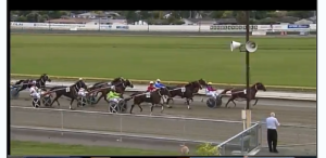 Kiwi Tintin first win 18 March 2016