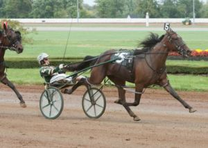 North American top filly Sassa Hanover