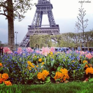 Paris Hanover competition